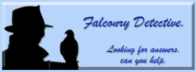 Falconry Questions