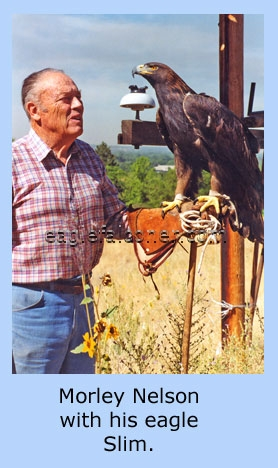 Morley Nelson with Eagle