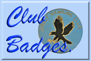 Falconry meet pins at Eaglefalconer.com