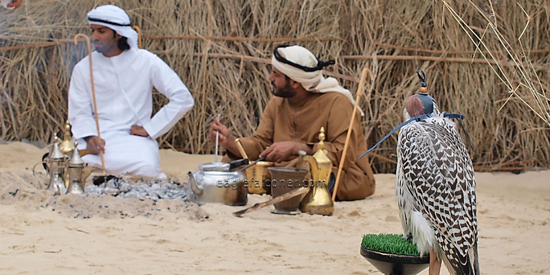 Arab village, Festival of Falconry