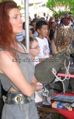 Joanne Bentley, Canadian Display falconer