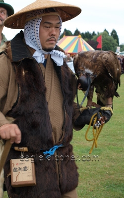 Japanese falconer,  Festival of Falconry