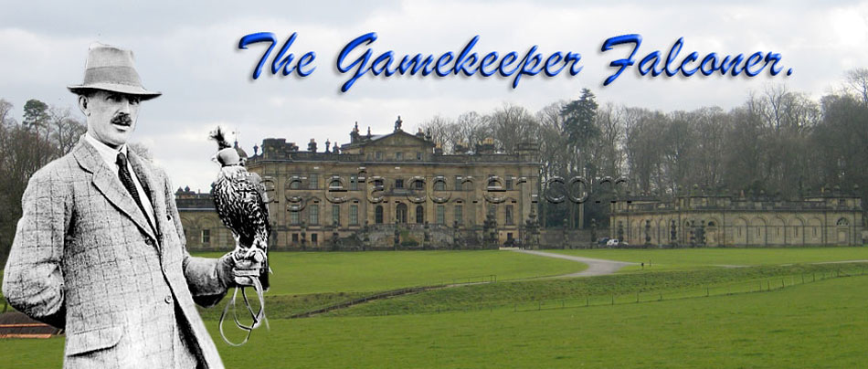 Adam Gordon, Gamekeeper and Falconer