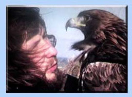 Golden Eagle called Ivan